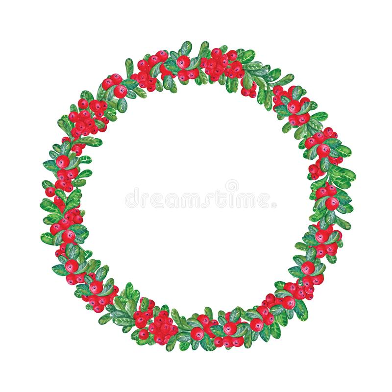 Elegant round wreath or circular frame made of cranberry sprigs hand drawn on white background. Painted in watercolor. Beautiful vector illustration