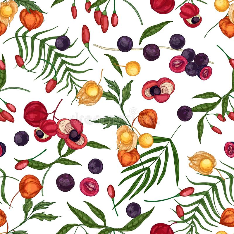 Elegant seamless pattern with fresh goji, acai, guarana, physalis fruits and berries on white background. Backdrop with vector illustration