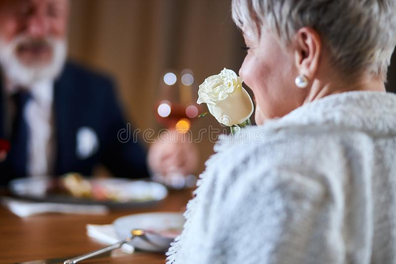 Elegant senior couple dressed up in tuxedo and white clothes, woman holding a Valentines Day rose. Handsome women in white holding white rose, celebrate stock images