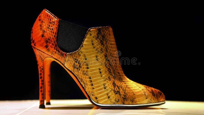 Elegant shoe for ladies royalty free stock photo