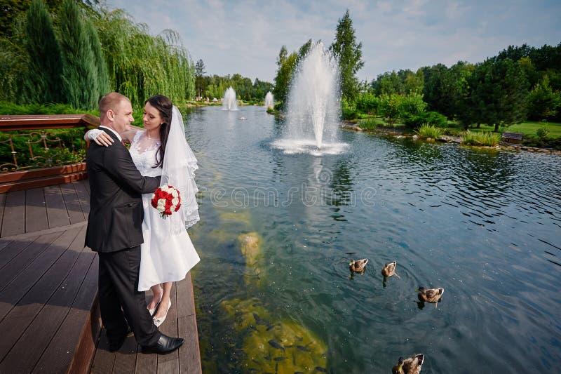 Elegant stilfull brudgum med hans lyckliga ursnygga brud på bakgrunden av en sjö med änder fotografering för bildbyråer