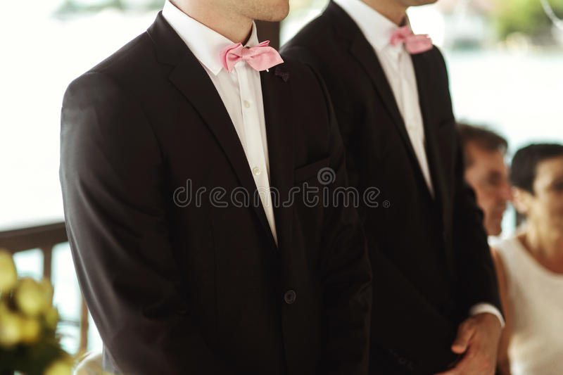 Elegant and stylish best men in black suits and pink bowties closeup royalty free stock photography