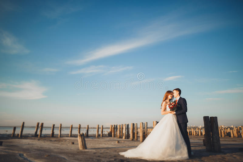 Elegant stylish happy wedding couple, bride, gorgeous groom on the background of sea and sky.  royalty free stock photography