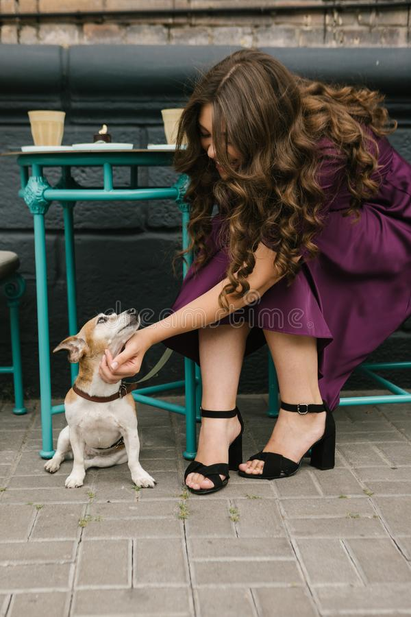 Elegant stylish woman petting small dog Jack russell terrier. Street cafe royalty free stock image
