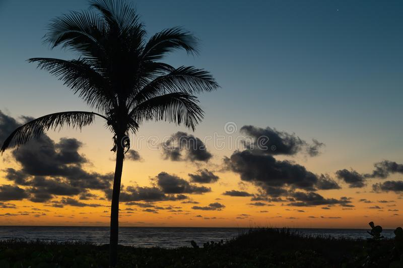 Sunrise on Delray Beach with clouds and calm water. Elegant sunrise on Delray Beach with clouds, calm water and palm tree in late winter royalty free stock photography