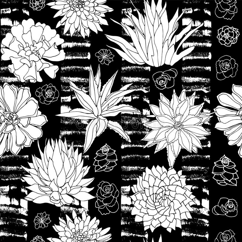 Elegant vector black and white succulent plants seamless pattern in a botanical style with textured stripe background stock illustration