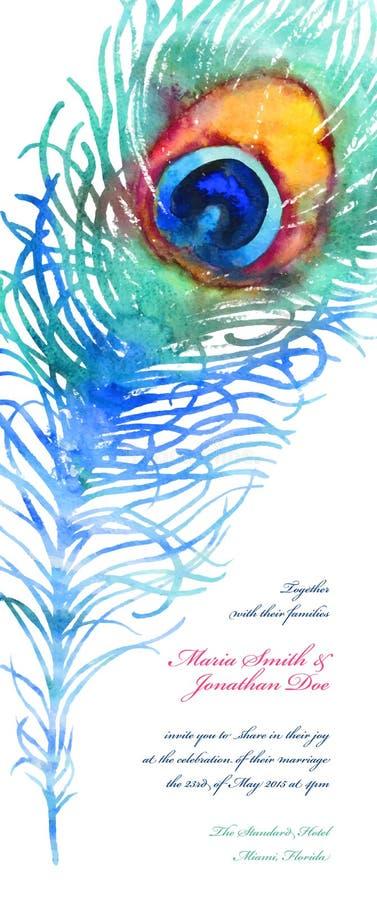 Elegant vektorbakgrund med vattenfärgpåfågelfjädern stock illustrationer
