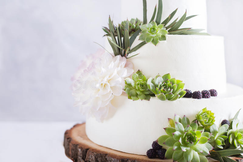 Elegant wedding cake with flowers and succulents. stock images