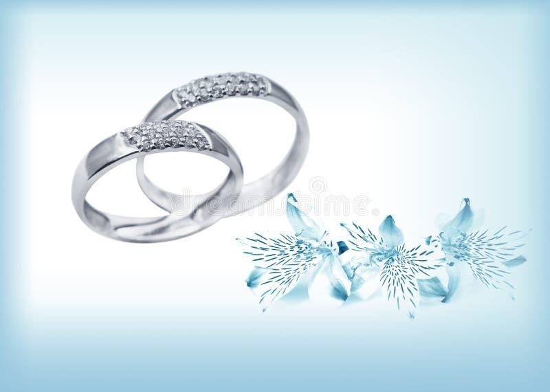 Elegant wedding rings with brilliants royalty free stock photos