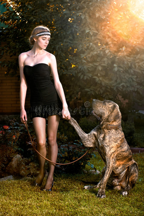 Elegant woman with big dog. Happy elegant woman with big dog in autumn forest royalty free stock image