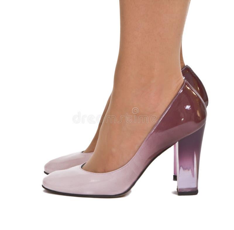 Download Elegant woman's shoes stock image. Image of heel, fashion - 8229089