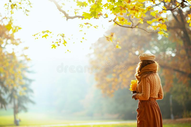 Elegant woman with yellow leaves outside in autumn park royalty free stock images