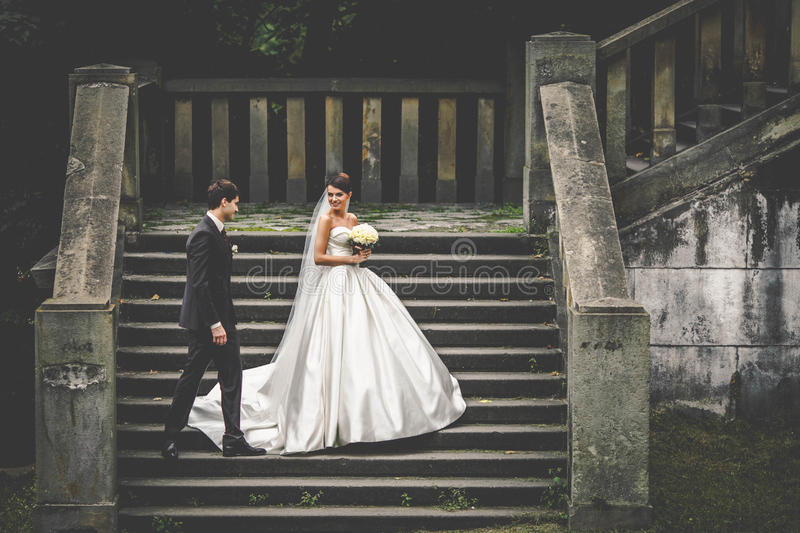 Elegant young couple royalty free stock photos