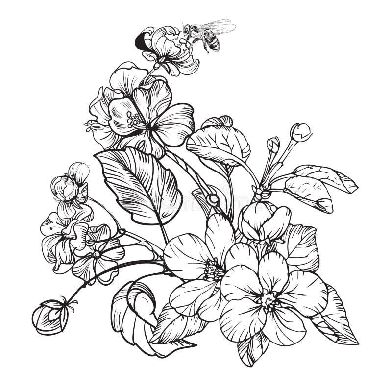 Eleganta blommor för tappning Svartvit vektorillustration bostonian stock illustrationer