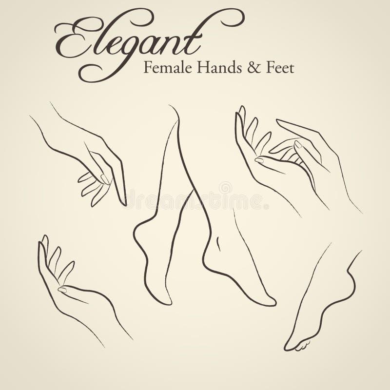 Eleganta konturer av kvinnliga händer och fot vektor illustrationer