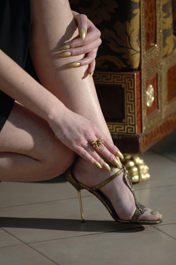 eleganta skor arkivfoton