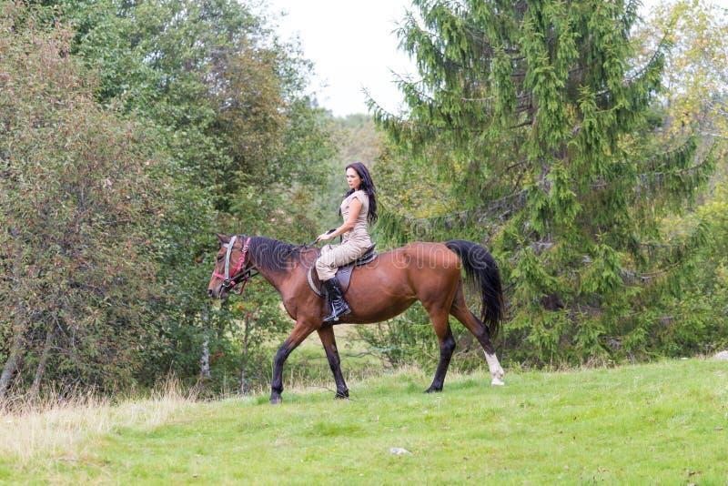 Elegante aantrekkelijke vrouw die een paardweide berijden royalty-vrije stock afbeelding