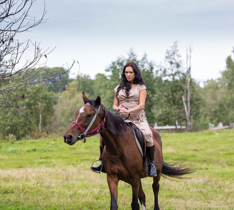 Elegante attraktive Frau, die ein Pferd reitet stockfotos