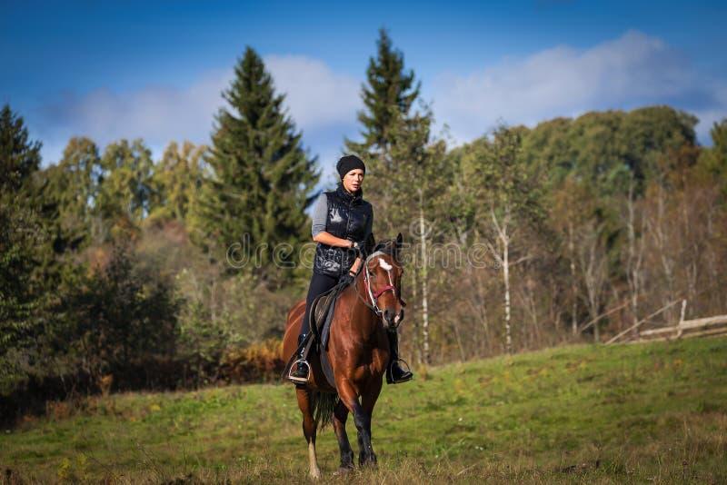 Elegante attraktive Frau, die ein Pferd reitet lizenzfreie stockfotos