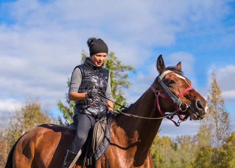 Elegante attraktive Frau, die ein Pferd reitet stockfoto