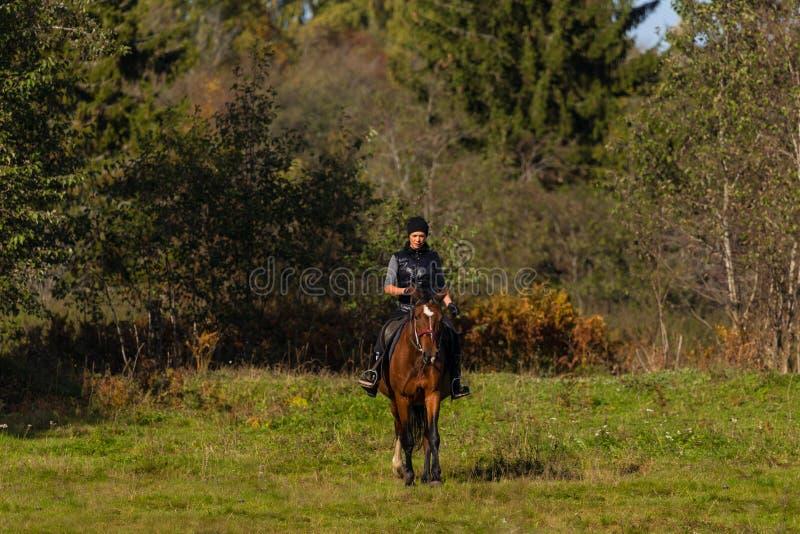 Elegante attraktive Frau, die ein Pferd reitet lizenzfreies stockbild