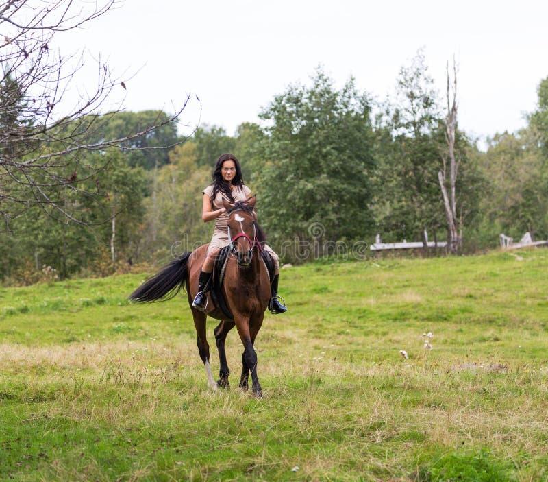 Elegante attraktive Frau, die eine Pferdewiese reitet lizenzfreies stockfoto