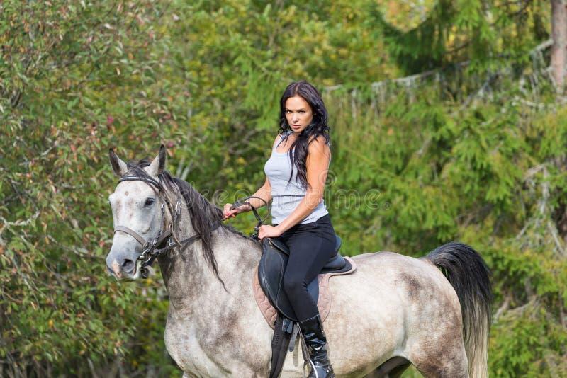 Elegante attraktive Frau, die eine Pferdewiese reitet lizenzfreie stockfotografie