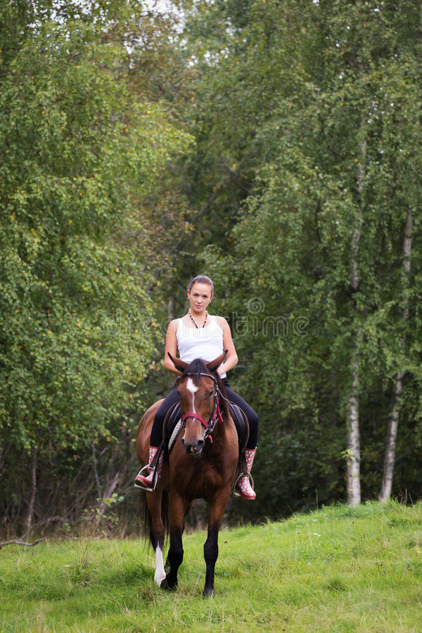 Elegante attraktive Frau, die eine Pferdewiese reitet stockfoto