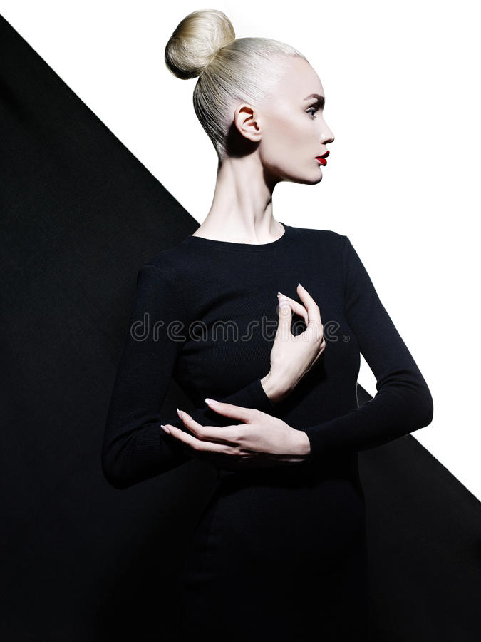Elegante blode op geometrische zwart-witte achtergrond royalty-vrije stock afbeelding