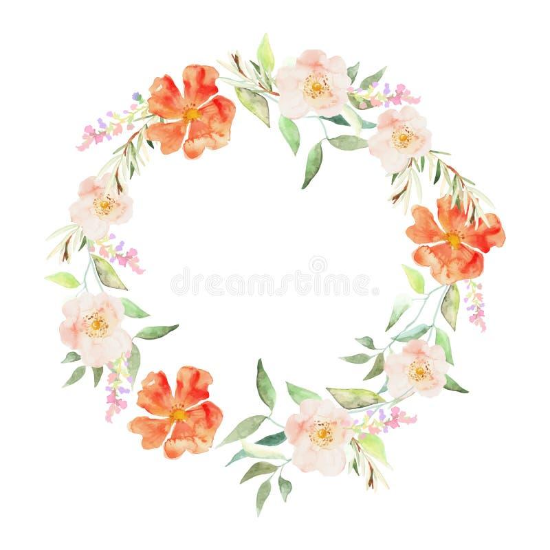Elegante bloemeninzameling met bladeren en bloemen, die water trekken stock illustratie