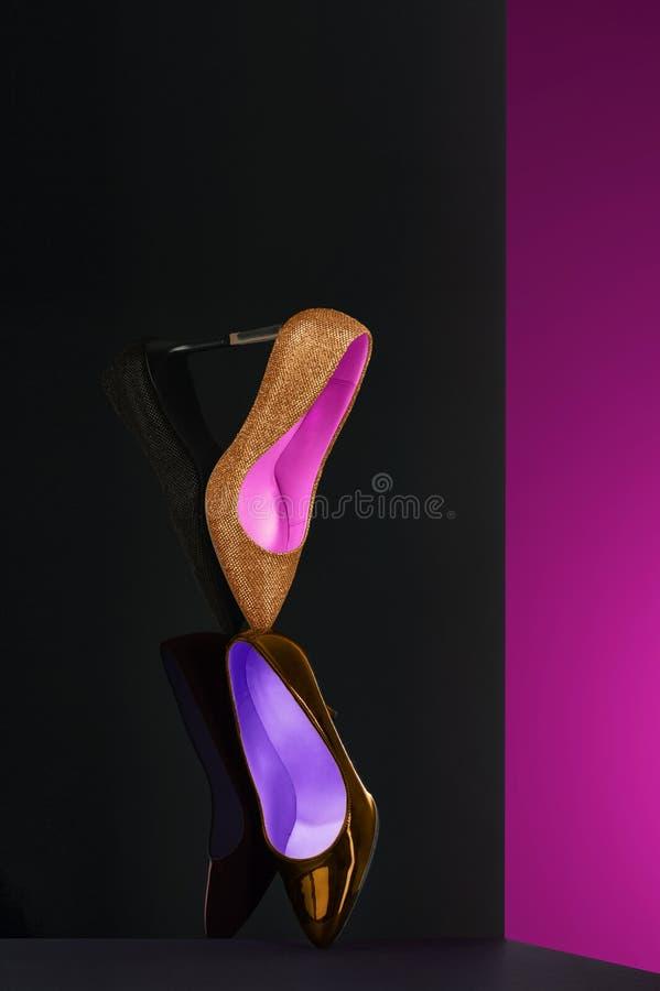 Elegante fijne kunstvertoning van klassieke hofschoenen stock fotografie