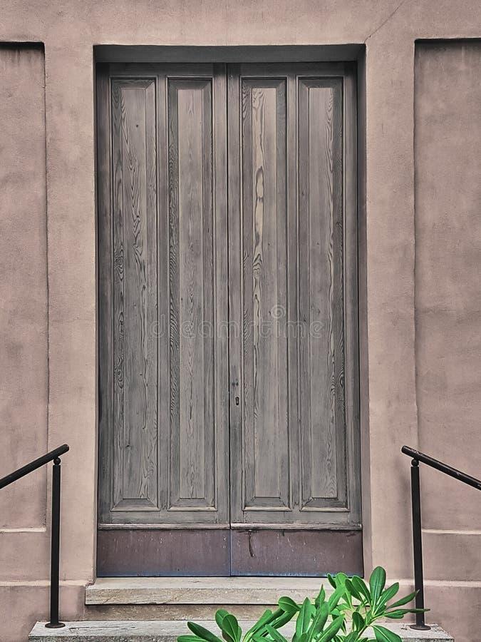 Elegante hölzerne Seitentür mit einer Grünpflanze und einer Treppe vor ihr stockfotos
