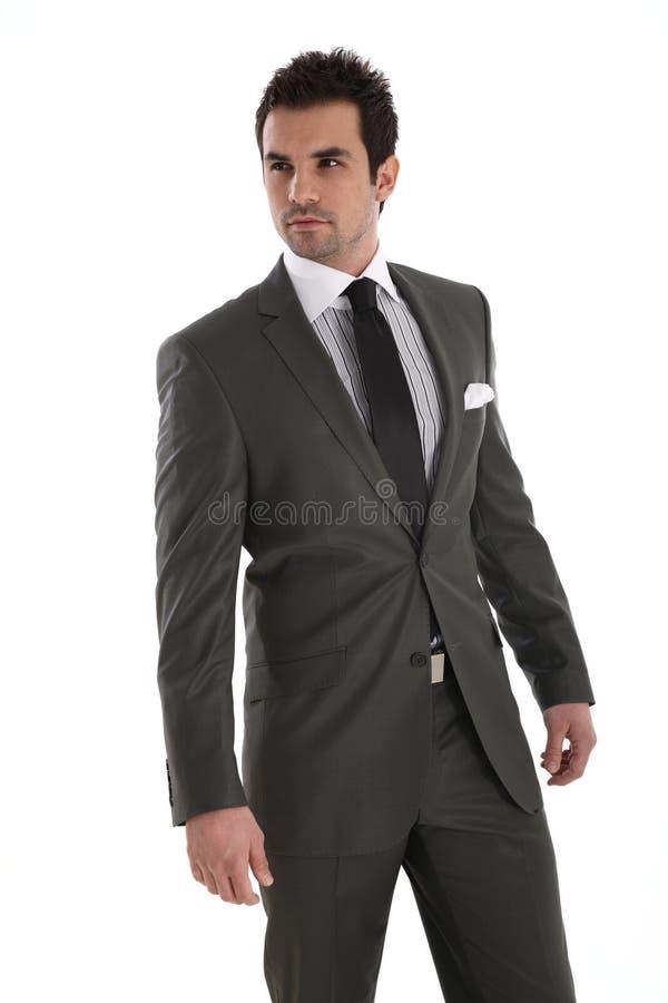 Elegante knappe mens in kostuum royalty-vrije stock afbeelding