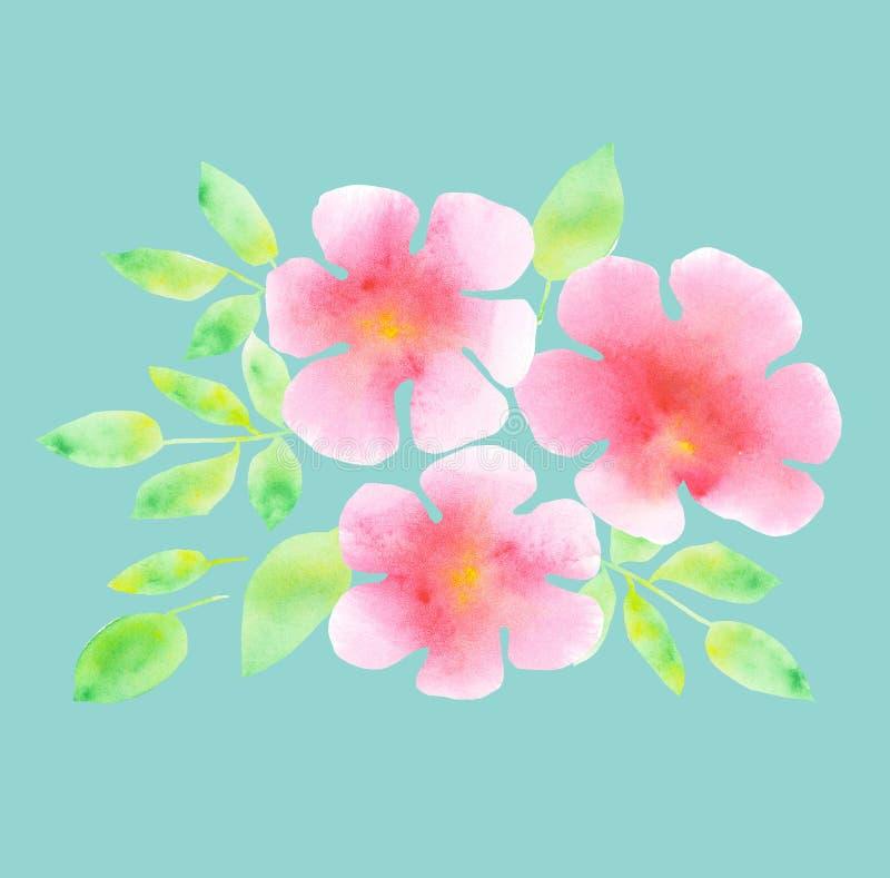 Elegante lichte rooskleurige bloesem op de blauwe achtergrond van de muntkleur royalty-vrije illustratie