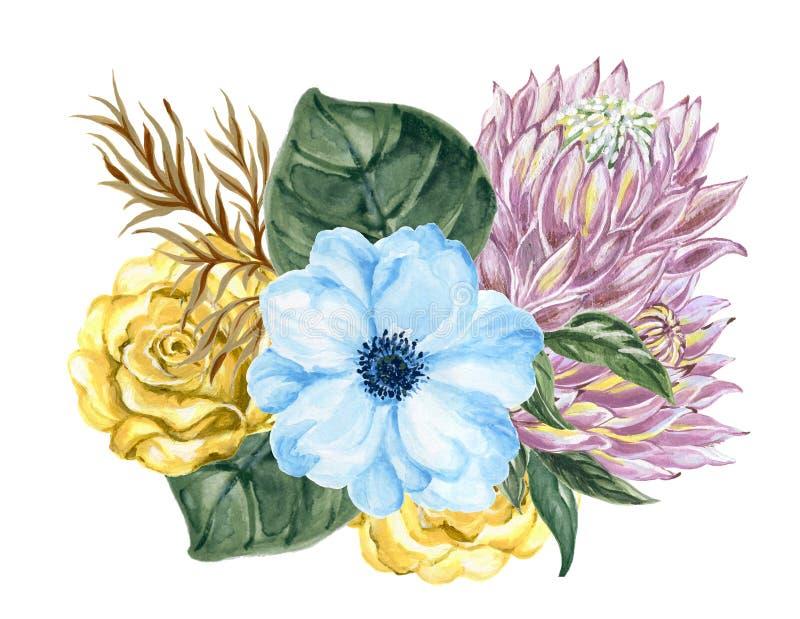 Elegante nam uitstekend van de waterverfgouache de bloem van anemoonprotea toe royalty-vrije illustratie