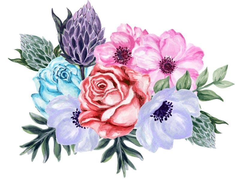 Elegante nam uitstekend van de waterverfgouache de bloem van anemoonprotea toe vector illustratie