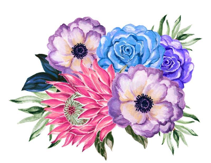 Elegante nam uitstekend van de waterverfgouache de bloem van anemoonprotea toe stock illustratie