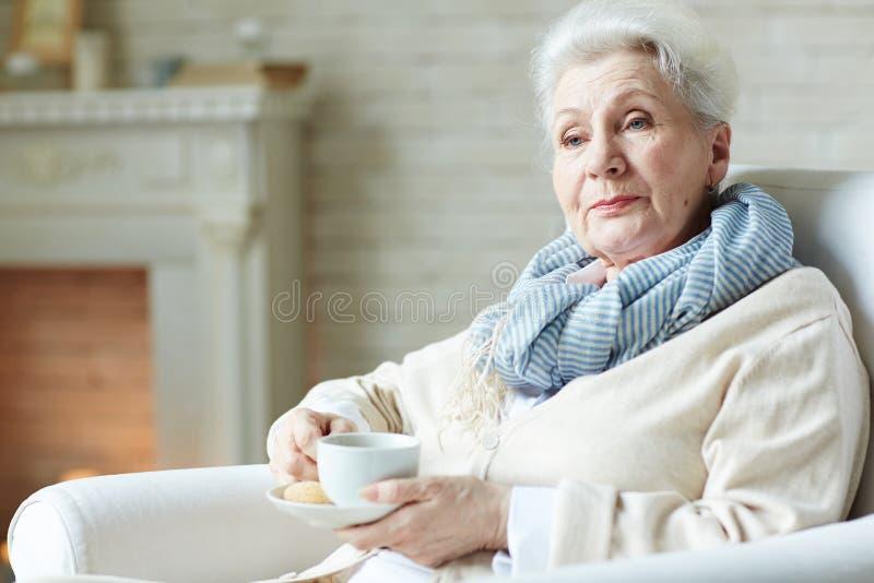 Elegante-olhando a mulher idosa foto de stock