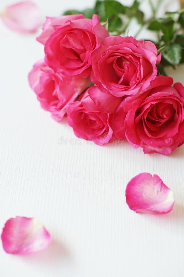 Elegante rosa Rose mit natürlichem weichem Licht auf weißem Tabellenhintergrund, schönes Valentinstaghintergrundkonzept lizenzfreie stockfotografie