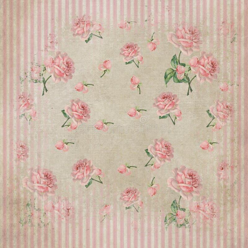 Elegante schäbige Rosen u. Streifenhintergrund vektor abbildung