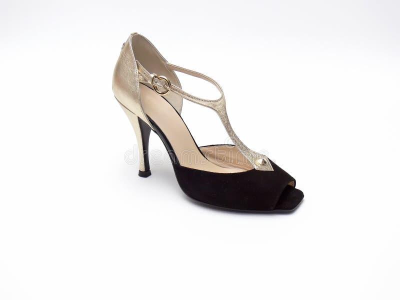 Elegante schoen royalty-vrije stock afbeeldingen