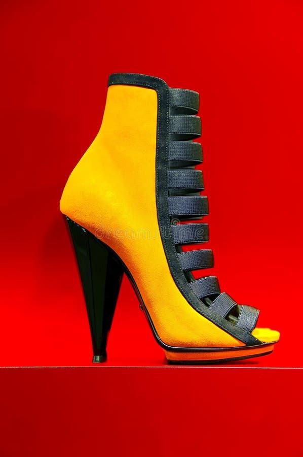 Elegante schoen voor dames stock fotografie