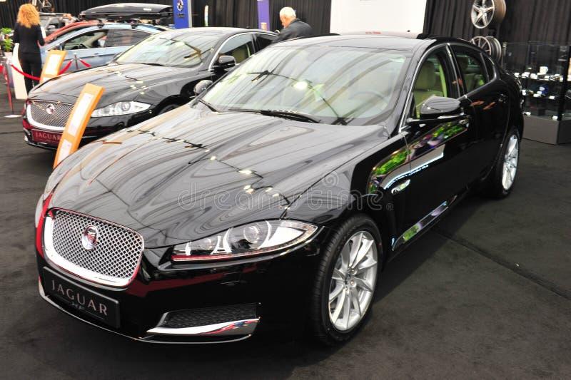 Limousine Jaguars XF stockfotografie
