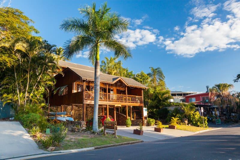 Elegante strandkeet bij Zeventien Zeventig, Queensland stock afbeelding