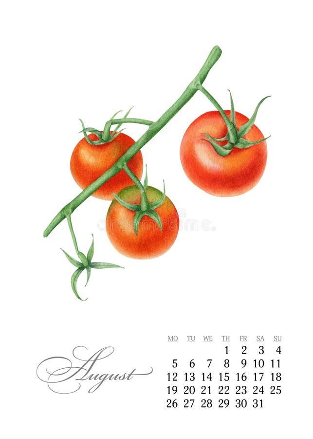 Elegante voor het drukken geschikte kalender 2019 August Watercolor-kersentomaten Succulente botanische plaat - verlaat cactus, v royalty-vrije illustratie