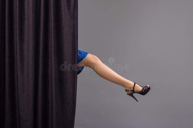 Elegante vrouwelijke benen royalty-vrije stock afbeelding