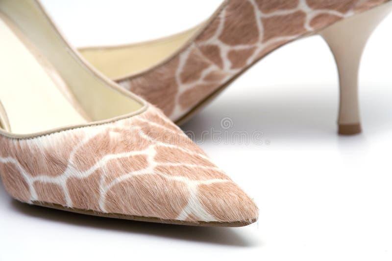 Elegante vrouwelijke schoenen royalty-vrije stock foto's