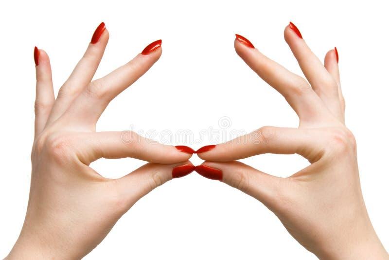 Elegante vrouwenhanden stock afbeeldingen