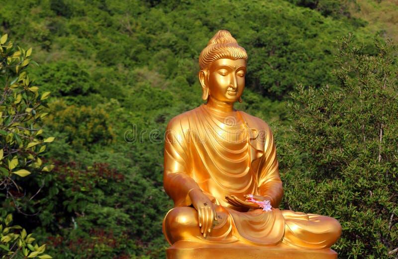 Eleganter Buddha stockbilder