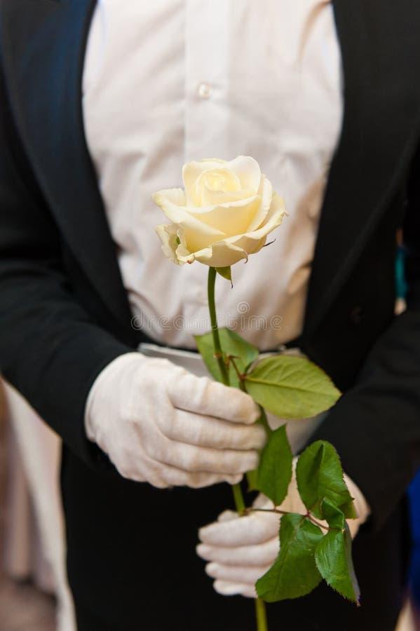 Eleganter Mann mit Weißrose in den Händen lizenzfreie stockfotografie